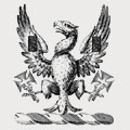 Parkin family crest, coat of arms