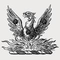 Aldridge family crest, coat of arms