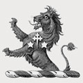 Athlumney family crest, coat of arms