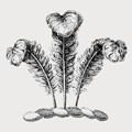 Quincy family crest, coat of arms