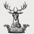 Austyn family crest, coat of arms