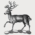 Da Costa family crest, coat of arms