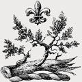 Atwood family crest, coat of arms