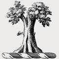 Telfer-Smollett family crest, coat of arms