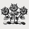 Zachet family crest, coat of arms