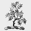 Walkfare family crest, coat of arms