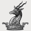 Young family crest, coat of arms