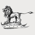 Aoluite family crest, coat of arms