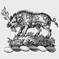 Bacon family crest, coat of arms