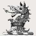 Yonge family crest, coat of arms