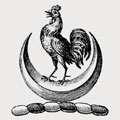 Illingsworth family crest, coat of arms