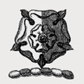 Abcott family crest, coat of arms
