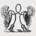 Angeldon family crest, coat of arms
