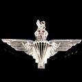 The Parachute Regiment Brooch (GVI)
